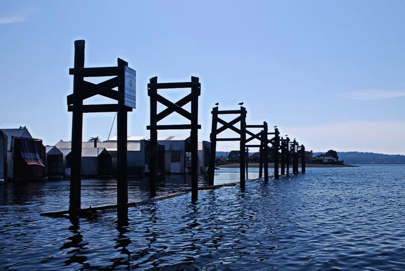 narrows marina, tacoma, puget sound