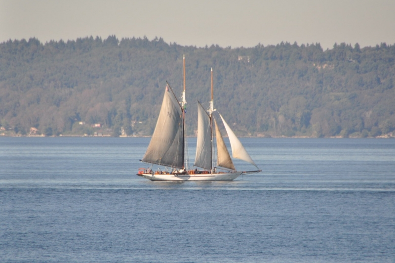 sailboat, commencement bay