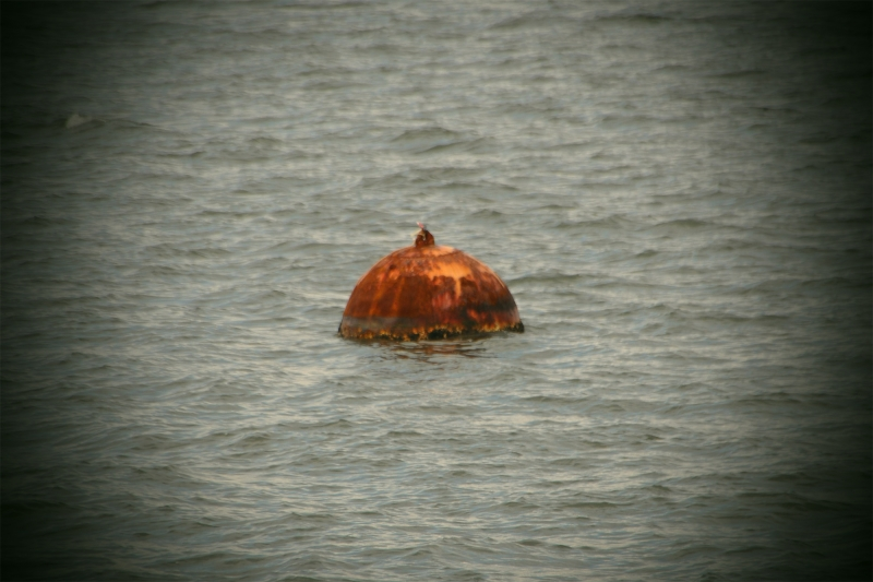 jesus, tacoma, commencement bay, buoy