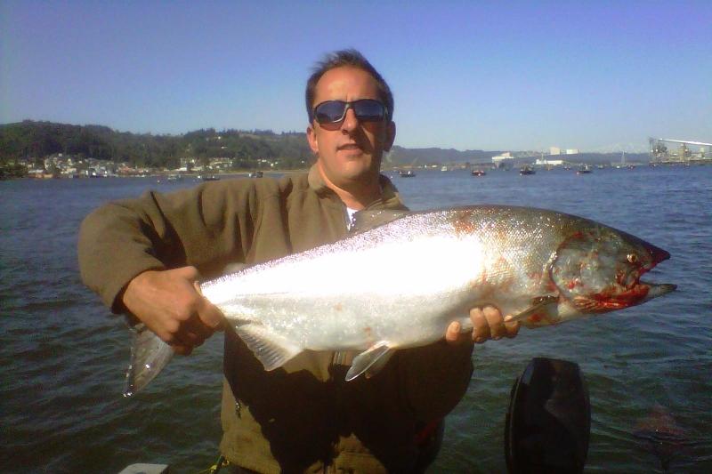 king, salmon