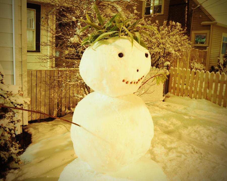 snowman, 2012, north end
