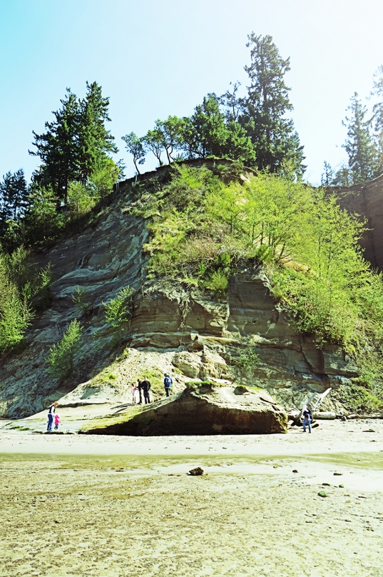 point defiance, low tide, exposed