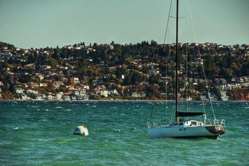 sailboat, commencement bay, ruston way, waterfront, tacoma