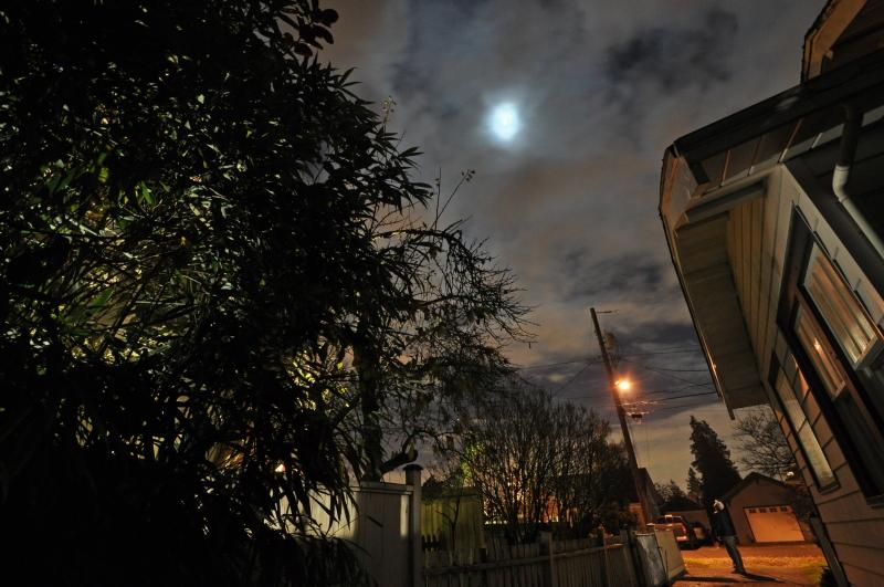 autumn, moon, november, night