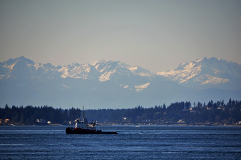 tug boat, puget sound, olympics, fox island bridge, gig harbor
