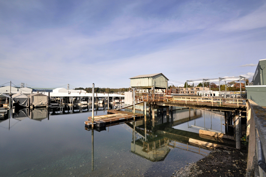 narrows marina, low tide