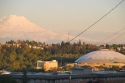 tacoma dome, mount rainier