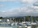 Marina, downtown Tacoma, boats
