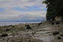 point defiance, tacoma, northern tip