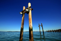 kayak, piling, commencement bay, ruston way